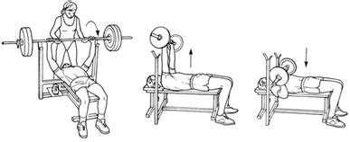 bench press definition how to get ripped in 12 weeks