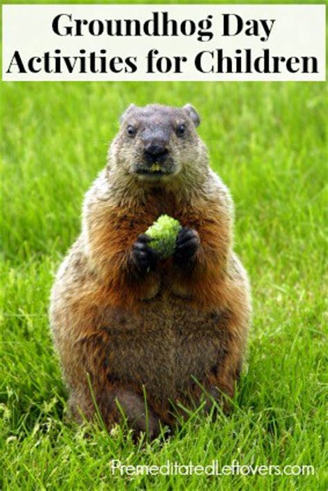groundhog day expression groundhog day activities for