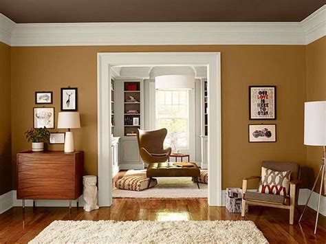 warms living rooms paint color appealing picture