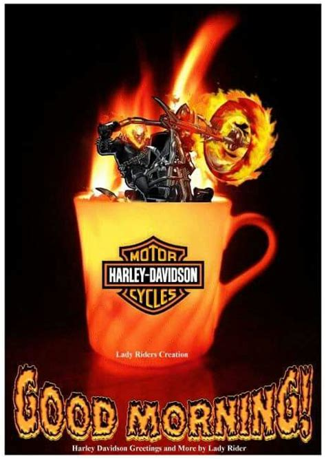 Morning Harley Davidson by 365 Best Nights Mornings Images On Mornings