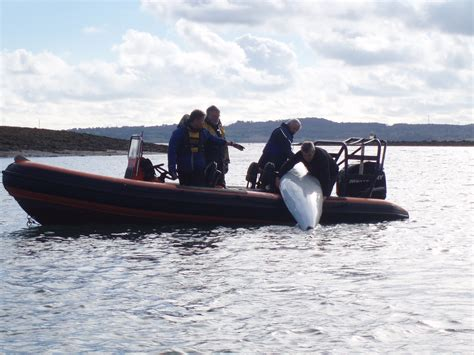 safety boat qualification rya safety boat course 7 8th april 2018 at edyc east