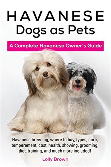 havanese temperament problems havanese dogs as pets havanese where to buy types care temperament cost