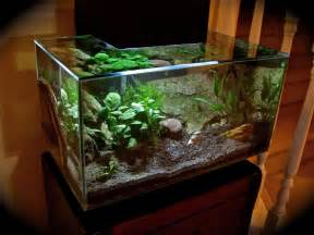 Show off your Fluval Edge tank thread   Page 2   Freshwater