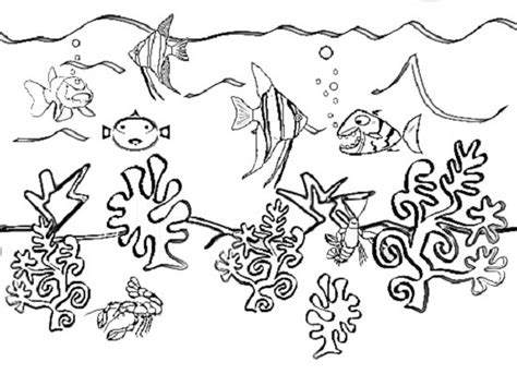 big under sea coloring pages
