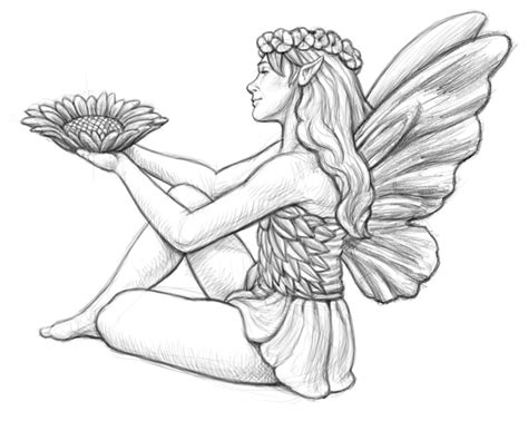 coloring books beautiful fairies 35 unique illustrations books free brown fairies coloring pages