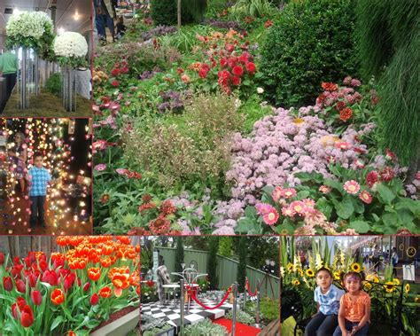 Flower And Garden Show Melbourne International Flower And Garden Show 2017 Melbourne By Happy
