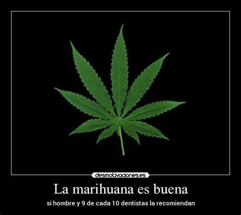 imagenes de weed con frases de amor frases de marihuana chidas frases de marihuana auto design