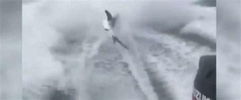 video of shark dragged behind boat florida men who dragged shark behind boat charged with