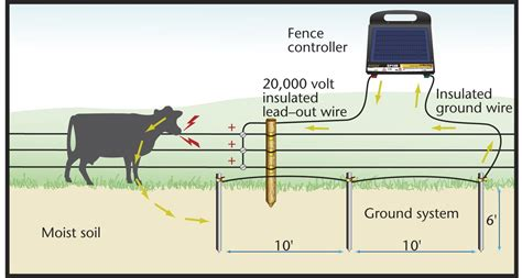 electric fencing circuit diagram the grounding circuit is a critical component of your