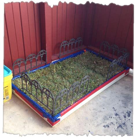 dog balcony bathroom diy apartment patio yard great for dogs pets