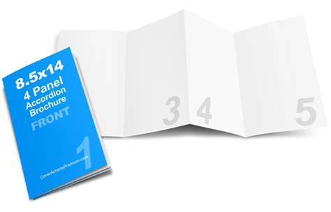 8 5 x 14 brochure template accordion fold brochure mockup 8 5 x 14 cover actions