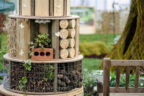 garden ideas for schools resources rhs caign for school gardening
