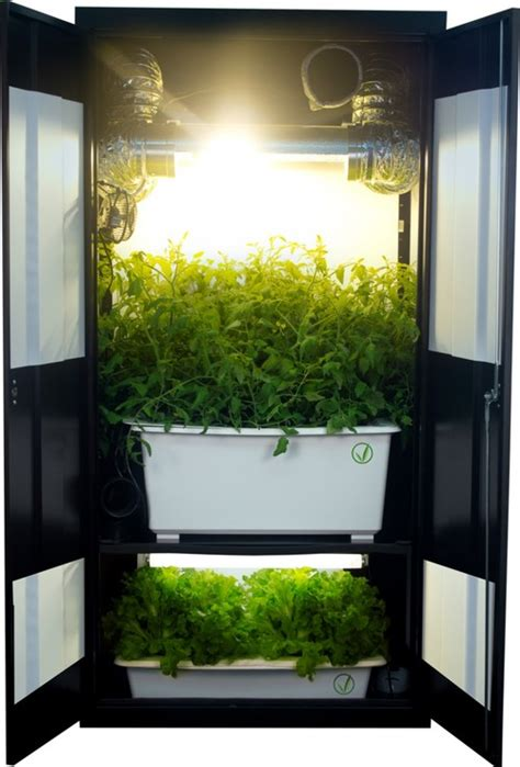 deluxe  grow closet grow box hydroponic cabinet system