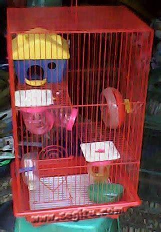 Kandang Hamster 231 2 Lantai kandang hamster murah segitu petshop