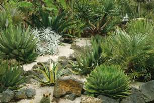 Little maintenance is easy when you select drought resistant plants