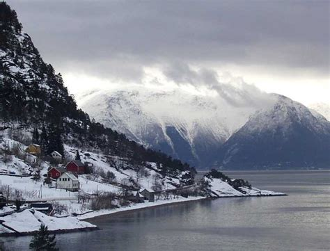 fjord day trips from bergen the bergen norway in a nutshell fjord day trip