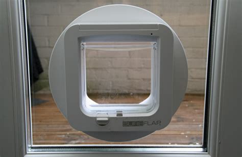 glass door cat flap feltham glass works supply and fit glass repairs for west