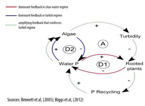 causal loop diagram tool 17 best images about causal loop diagrams on