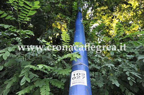 palo illuminazione pubblica la segnalazione 171 verificate le condizioni dei pali dell