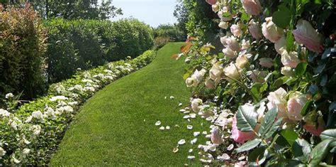 piccoli giardini di casa realizzazione giardini e aree verdi treviso