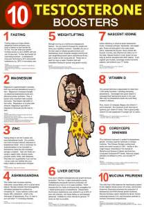 home remedies for low testosterone best 25 testosterone ideas on