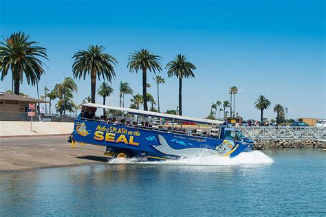 san diego boat tours san diego seal tour tickets departing from embarcadero