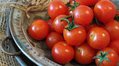 prostata alimentos c 226 ncer de pr 243 stata causas sintomas e tratamentos