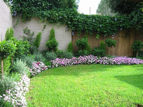 purple flower plants for backyard garden landscaping around house with various plants and fence