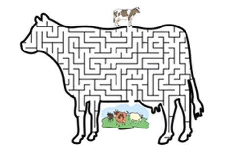 printable cow maze kids stuff