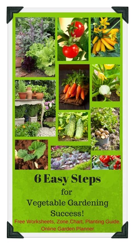 vegetable garden plans zone 6 161 best images about vegetable garden beginner plans on