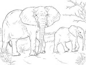 coloring page of african elephant ausmalbild afrikanische elefantenkuh mit baby