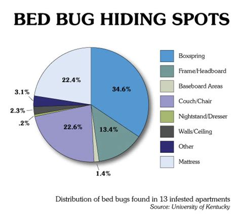 Bed Bug Hiding Places by Bed Bug Hiding Spots