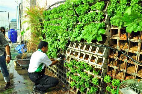 New urban garden for kasetsart university in thailand