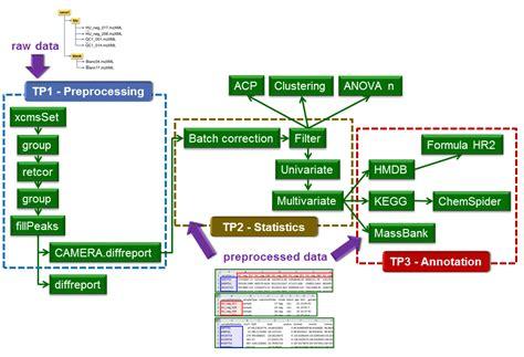 workflow analysis exle the lc ms workflow workflow4metabolomics org