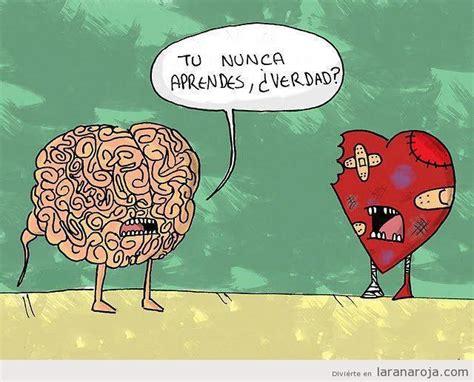 cerebro a coraz 243 n t 250 nunca aprendes 191 verdad cosas que pasan