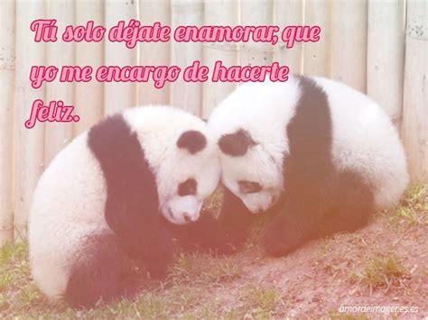 imagenes de fraces de amor de osos im 225 genes tiernas de pandas con frases