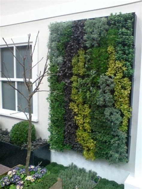 Wall Herb Garden by Hanging Herb Garden Outdoors Pinterest