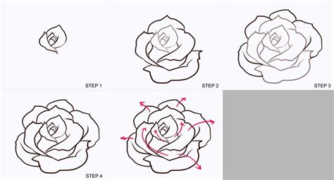 how to draw doodle roses roses drawing free clip free clip