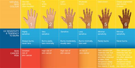 what causes different skin colors 6 best images of dermatology skin check up chart skin