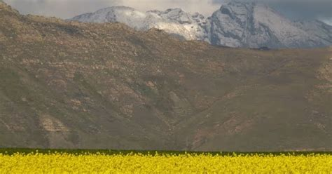 sa weather and disaster observation service image snow