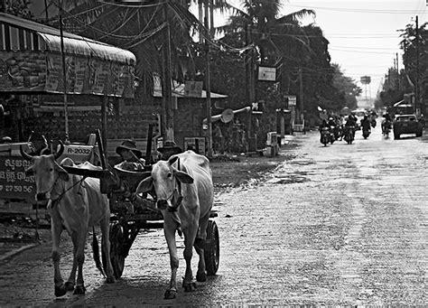 cambogia turisti per caso gente di cambogia viaggi vacanze e turismo turisti per