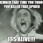Young Frankenstein Meme - young frankenstein meme generator imgflip