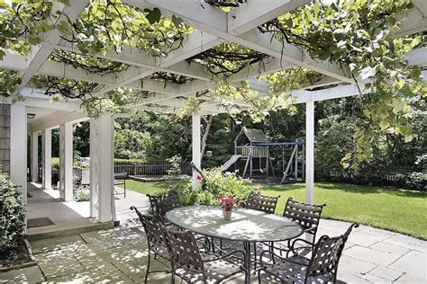Pergola Plants And Vines Landscaping Network Pergola Plants For Shade