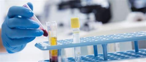 protein z mangel antithrombin iii das sagt der blutwert
