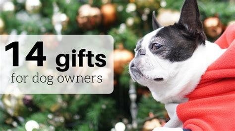 14 gifts for dog owners unique gifts every dog lover