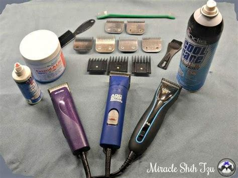 best grooming tools for shih tzu tips for choosing the grooming clipper and accessories