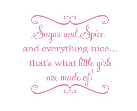sugar and spice and everything nice vinyl wall decal baby