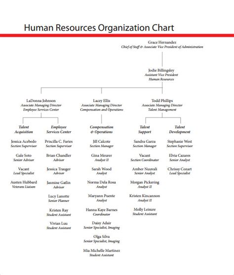 human resources template sle human resources organizational chart 9 documents
