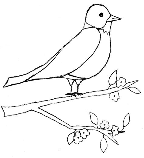 coloring page bird feeder winter bird feeder coloring page coloring pages