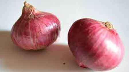 cara membuat zpt dengan bawang merah cara menghitamkan dan menebalkan alis secara alami info